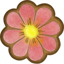 Magnetka kvet-2